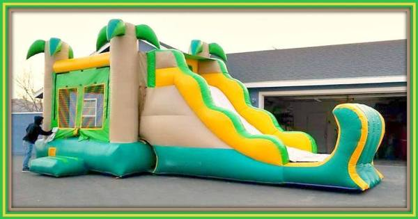 2in1 combo (palm tree)